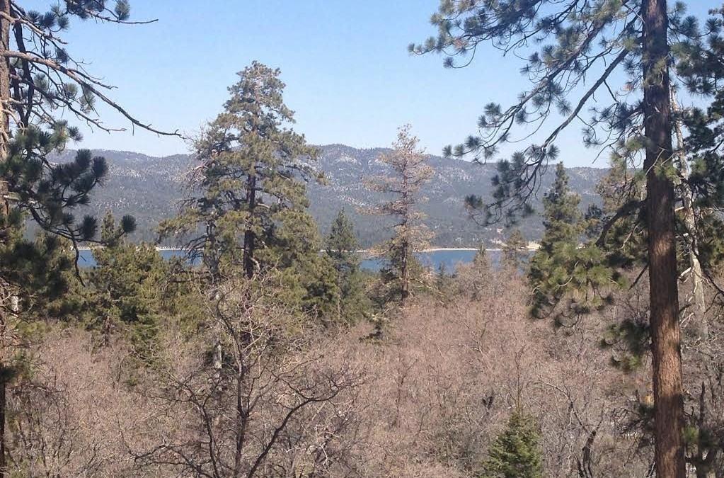 Mill Creek Road Trail – Big Bear Lake Hiking Trails