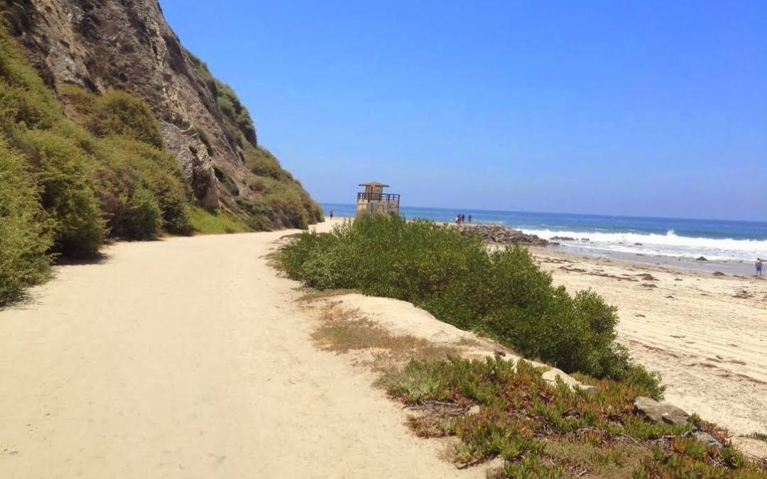 Salt Creek Beach Hiking Trail