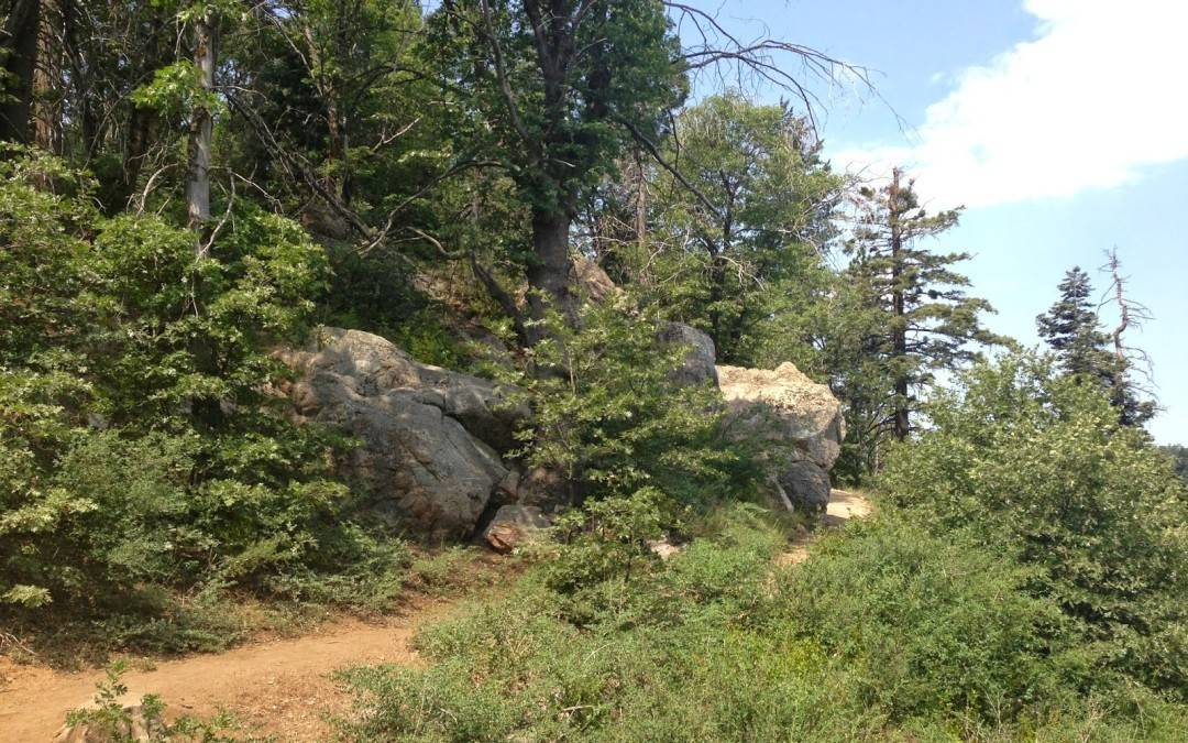 Lake Arrowhead Hiking Trails – Heaps Peak Arboretum