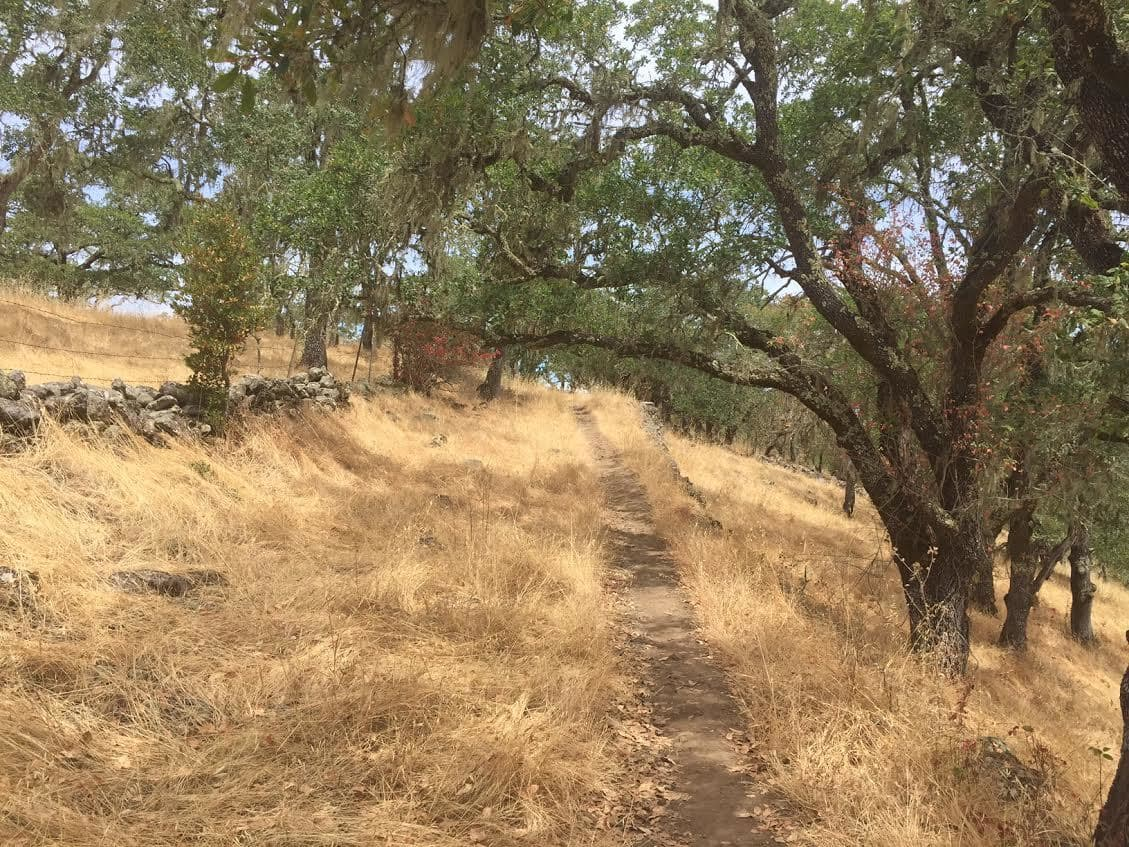 Annadel State Park Hike
