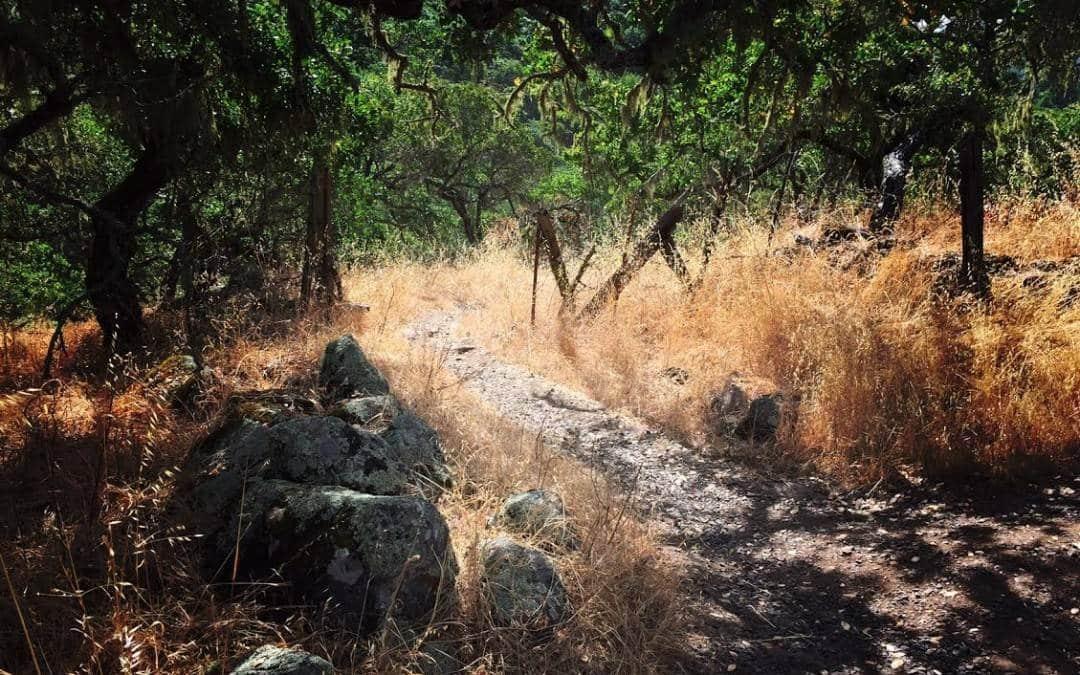 Santa Rosa – Annadel State Park Hiking Trail