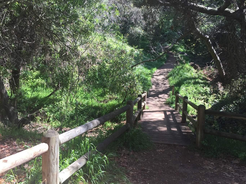 Franklin-Canyon-Hike-Los-Angeles-Hiking-Trails-Santa-Monica-Mountains