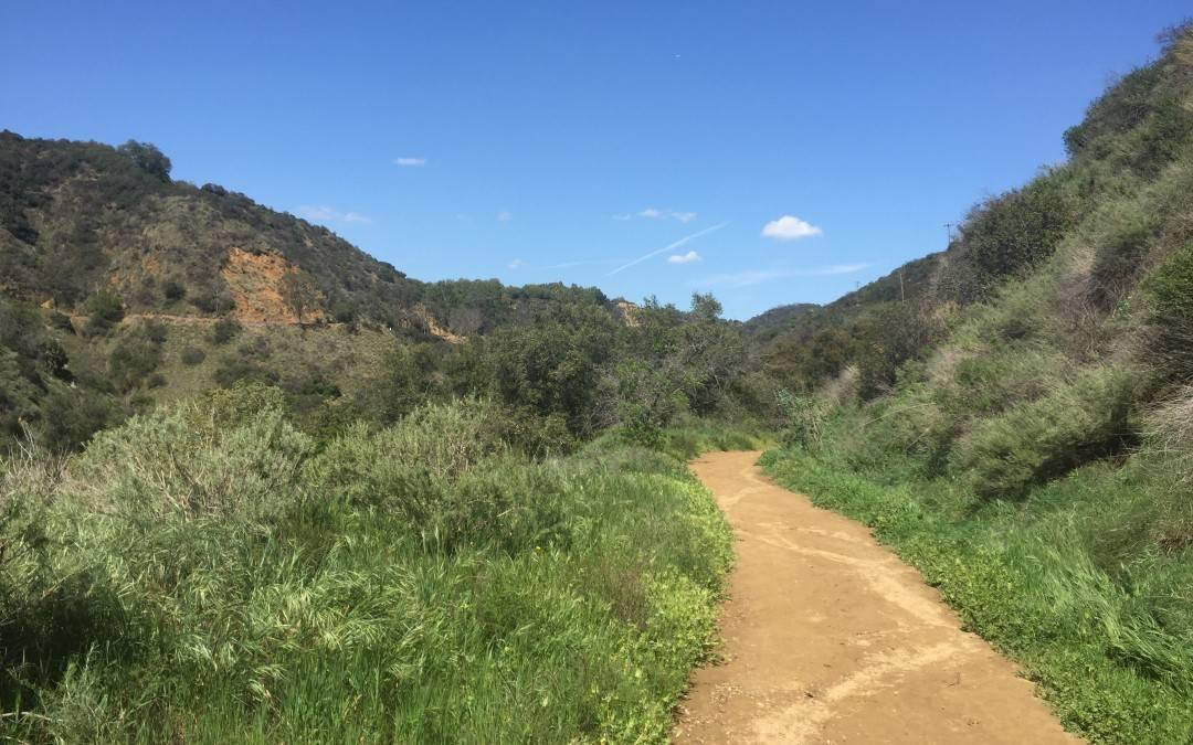 Franklin Canyon Park | Los Angeles Hiking Trail