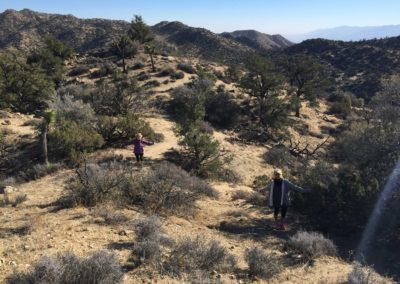 joshua-tree-hike-palm-springs-hikes-11