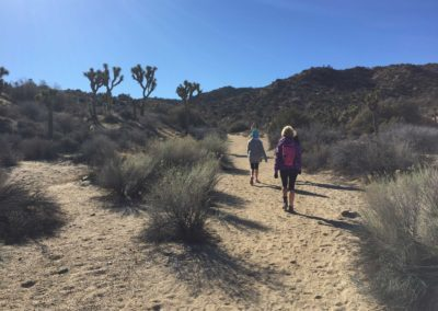 joshua-tree-hike-palm-springs-hikes-19