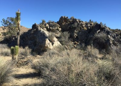 joshua-tree-hike-palm-springs-hikes-23