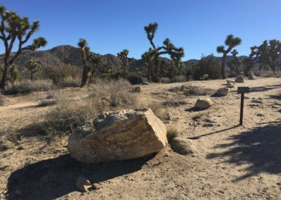joshua-tree-hike-palm-springs-hikes-44