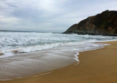 gray-whale-beach-half-moon-bay-beach-hikes-3