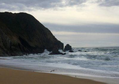 gray-whale-beach-half-moon-bay-beach-hikes-4