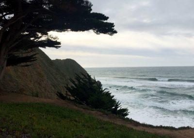 gray-whale-beach-half-moon-bay-beach-hikes-5