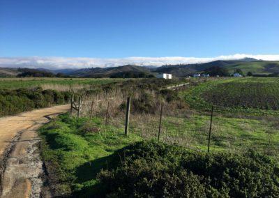 half moon bay hiking trail, half moon bay, san francisco hikes, cowell trail, cowell ranch, go hike it, sean tiner, ashley tiner