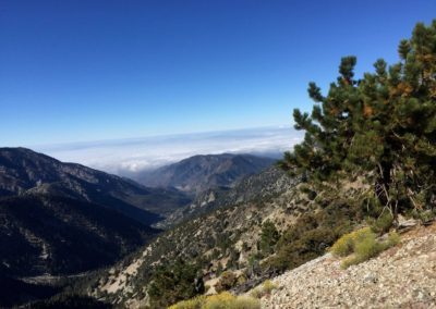 mt-baldy-hike-run-to-the-top-trail-31