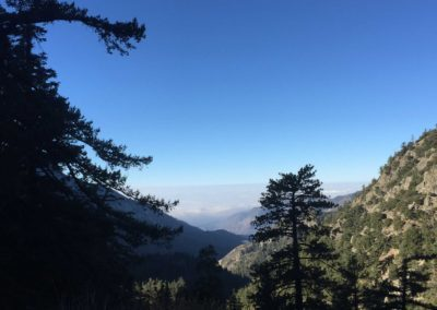 mt-baldy-hike-run-to-the-top-trail-34