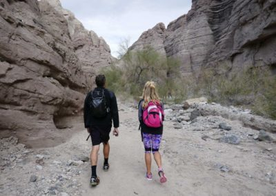 palm-springs-ladder-canyon-hike-mecca-canyon-44