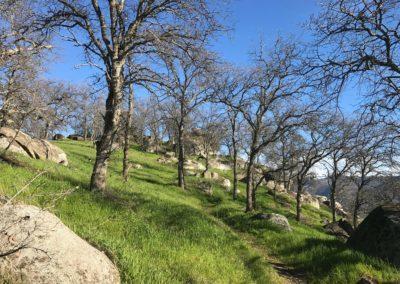 edison point trail, pine flat lake, fresno hike trail, best hikes in fresno, pine flat lake reservoir