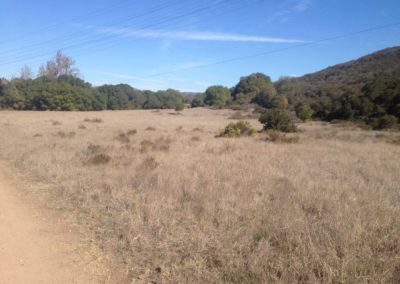 Los Penasquitos Canyon Preserve, san diego hiking trails, best san diego hikes, where to hike in san diego