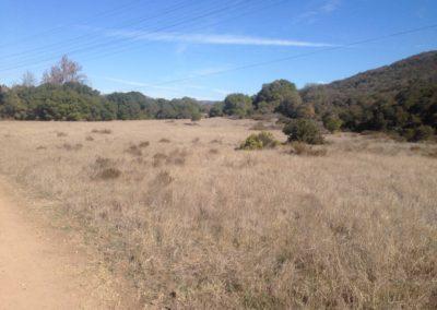 Los-Penasquitos-Canyon-Preserve-Hike-3