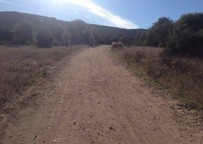 Los-Penasquitos-Canyon-Preserve-Hike-4