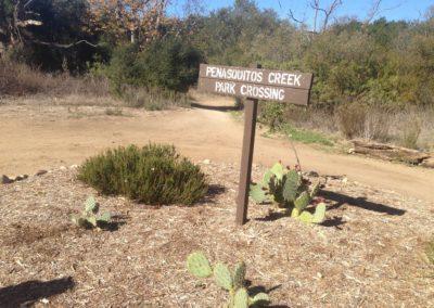 Los-Penasquitos-Canyon-Preserve-Hike-5