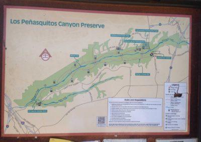 Los-Penasquitos-Canyon-Preserve-Hike-7