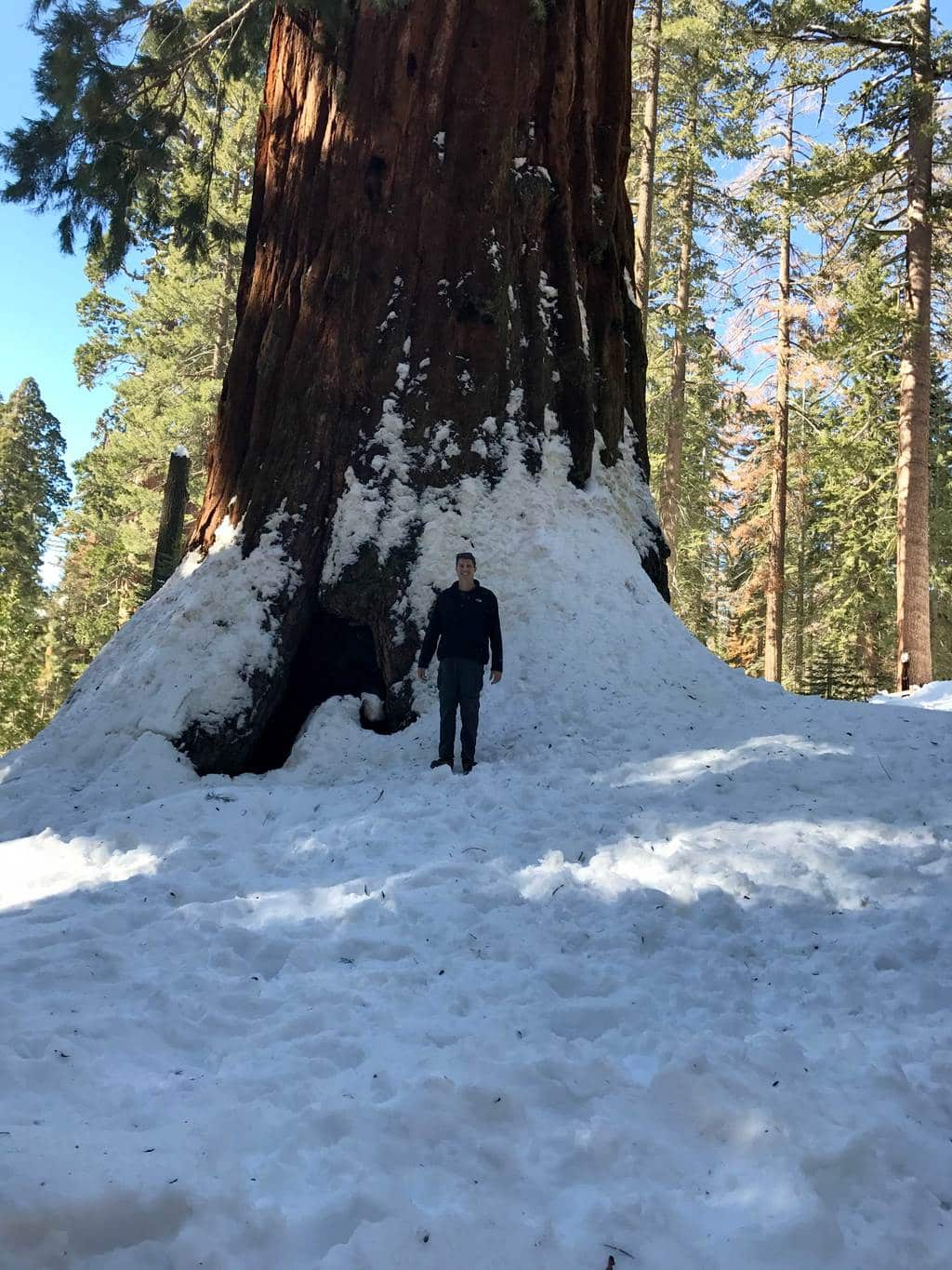 kings-canyon-giant-sequoia-general-sherman-tree-12