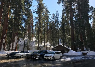 kings-canyon-giant-sequoia-general-sherman-tree-parking-center