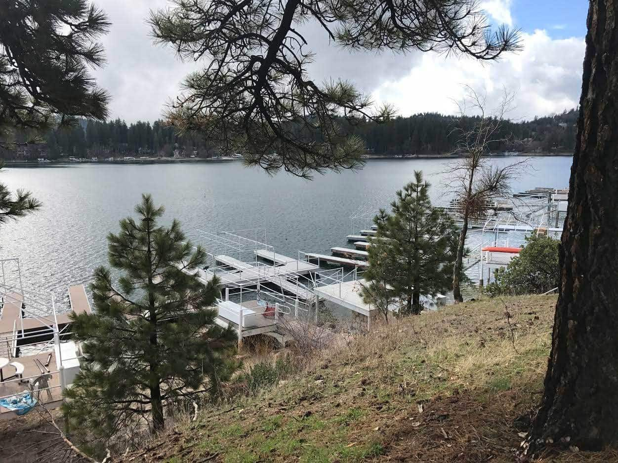 Lake Arrowhead Hiking Trail, Best hikes in Lake Arrowhead, Lake arrowhead hike, where to hike in lake arrowhead, lakefront hike