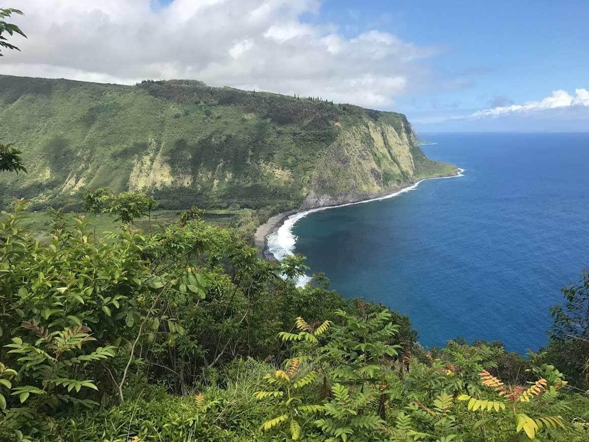 Big Island Waipio Valley Hike