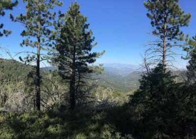 lake-arrowhead-hiking-trail-hidden-bench-12