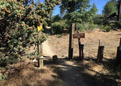 lake-arrowhead-hiking-trail-hidden-bench-14
