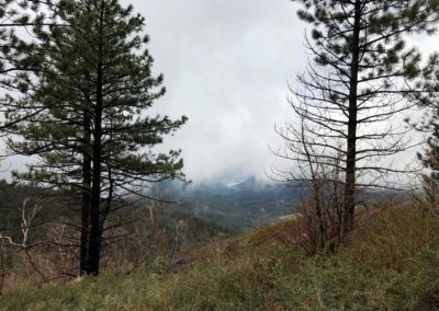lake-arrowhead-hiking-trail-hidden-bench-4