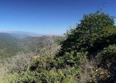 lake-arrowhead-hiking-trail-hidden-bench-7