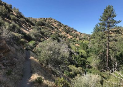 Deep-Creek-Hot-Springs-Lake-Arrowhead-Hiking-Trail-13