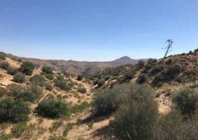 Deep-Creek-Hot-Springs-Lake-Arrowhead-Hiking-Trail-15