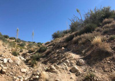 Deep-Creek-Hot-Springs-Lake-Arrowhead-Hiking-Trail-24