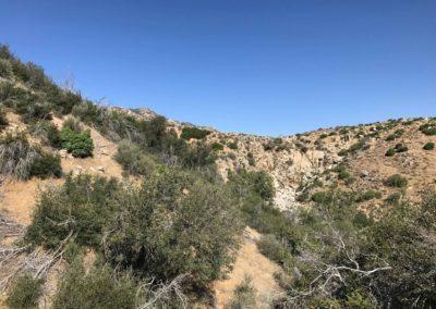 Deep-Creek-Hot-Springs-Lake-Arrowhead-Hiking-Trail-3