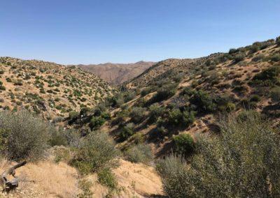 Deep-Creek-Hot-Springs-Lake-Arrowhead-Hiking-Trail-6