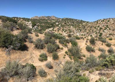 Deep-Creek-Hot-Springs-Lake-Arrowhead-Hiking-Trail-8
