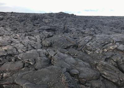 Volcano-National-Park-Hawaii-Hiking-Trail-17