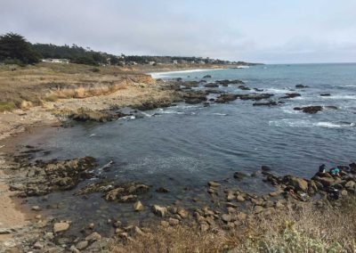 Moonstone Beach Cambria Dog Friendly