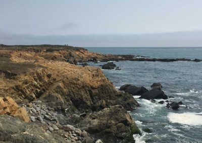 cambria-moonstone-beach-boardwalk-hiking-trail-13