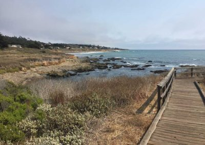 cambria-moonstone-beach-boardwalk-hiking-trail-9