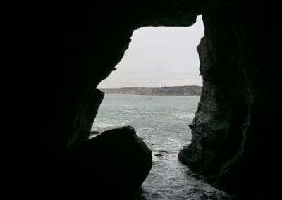 la-jolla-sea-caves-hike-1