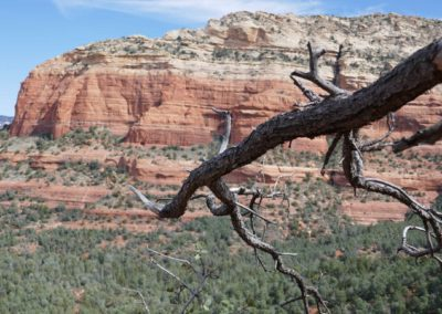 sedona-hiking-trail-devils-bridge-19