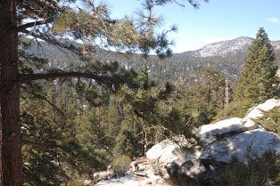 palm-springs-tram-hiking-trail-8