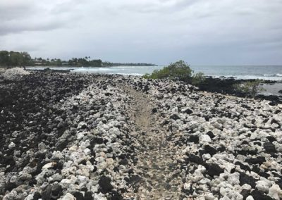 kukio-beach-hawaii-hiking-trail-sea-turtle-beach-6