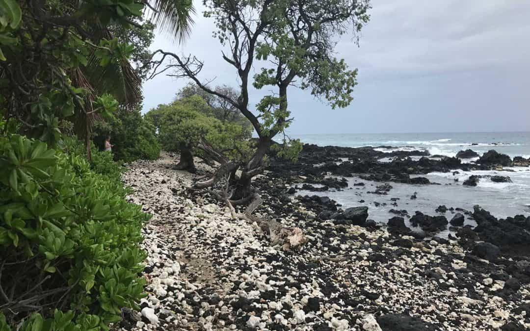 Kuki'o Beach Hawaii Hiking Trail