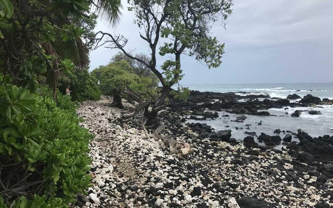 Kuki'o Beach Hawaii Hiking Trail