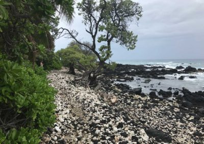kukio-beach-hawaii-hiking-trail-sea-turtle-beach-7