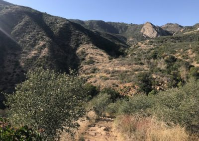 malibu-hiking-trail-solstice-canyon-santa-monica-mountains-10
